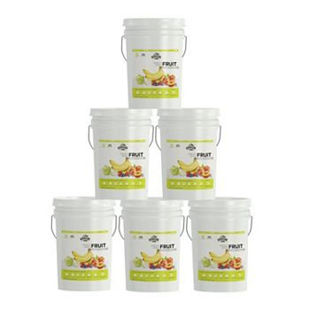6 Pails Augason Farms Freeze-Dried Fruit Variety Kit