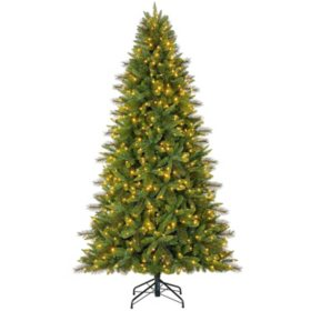 members mark 75 color changing grand spruce christmas tree