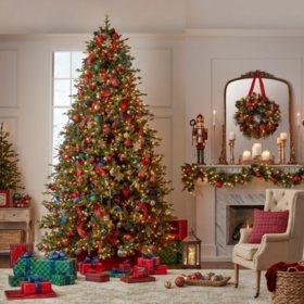 Member's Mark 12' Linden Spruce Christmas Tree
