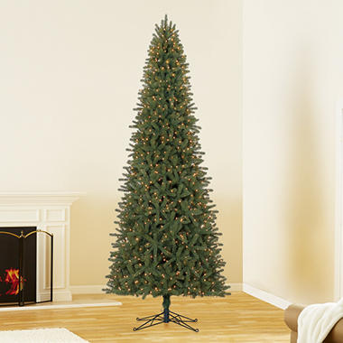 12 ft members mark artificial pre lit ellsworth fir christmas tree