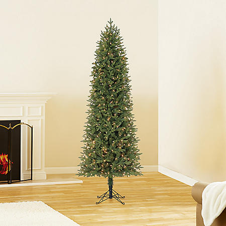 7 ft Member's Mark Artificial Pre-Lit Dawson Pine Christmas Tree