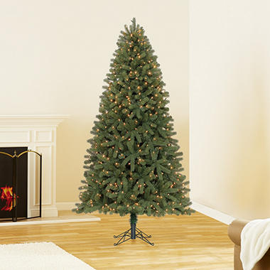 7 5 Ft Member S Mark Artificial Pre Lit Scotch Pine Christmas Tree