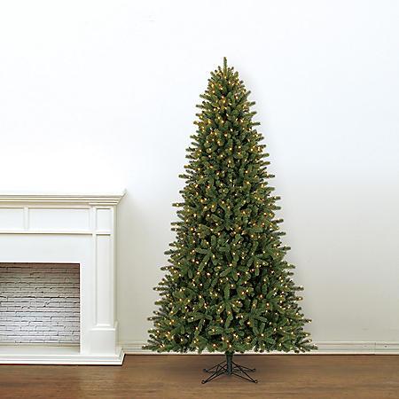 9' Member's Mark Artificial Pre-Lit LED Lansing Pine Quick Set Simple Shape Christmas Tree