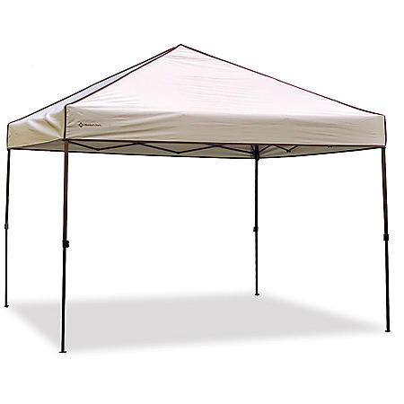 Member's Mark 10 x 10 Canopy