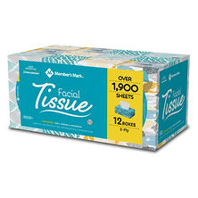 Member's Mark 2-Ply Unscented Facial Tissue (12 ct.,160 tissues per box)