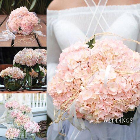 Hydrangea, Bridal Pink (15 stems)