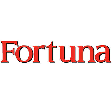 Fortuna Blue 100s  1 Carton