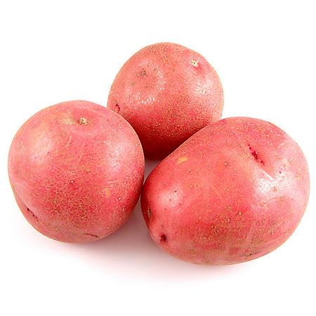 Petite Red Potato (5 lbs.)