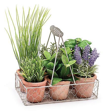 6-Pot Herb Caddy - Set of 4