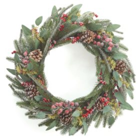 "22"" Frosty Pine Wreath, Set of 2"