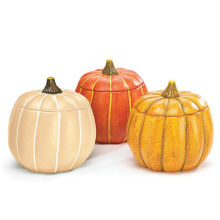 Porcelain Pumpkin Planter Assortment (3 ct.)