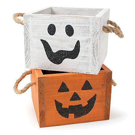 Jack-O-Lantern Face Planter Assortment (8 ct.)