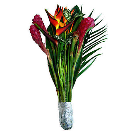 Exotic Jungle Bouquet (5 Bunches)