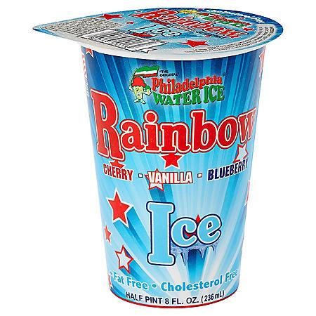 Philadelphia Water Ice, Cups (8 oz., 12 pk.)