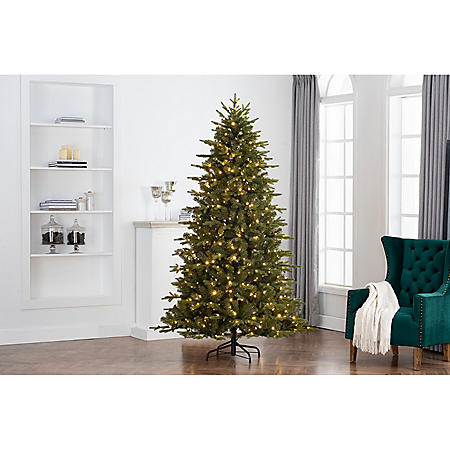 Member's Mark 7.5' Majestic Fir Color-Changing LED Christmas Tree