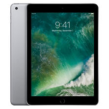 Apple iPad  Wi-Fi - Various Colors and Sizes