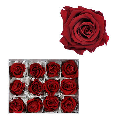 Infinite Rose Heads, Red (12 ct.)