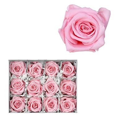 Infinite Rose, Light Pink (12 rose heads)