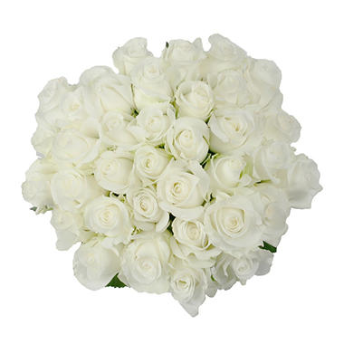 Roses, White (75 stems)