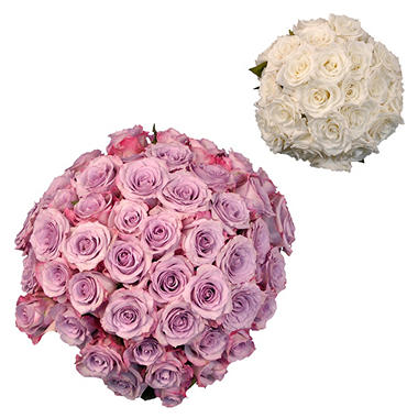 Roses - Wedding Pack, Lavender & White (75 stems)