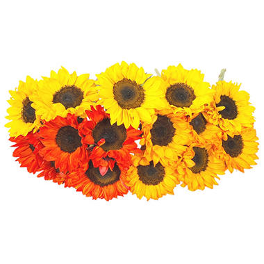 Sunflowers, Tinted (40 stems)
