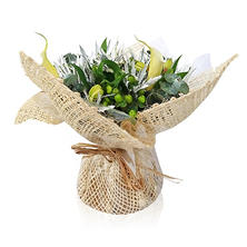 Mini Arrangement, Burlap Calla Lilies and Eucalyptus (5 arrangements)