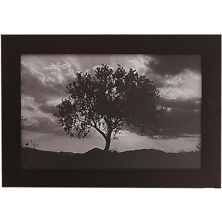BLACK AND WHITE TREE PTM WALL ART