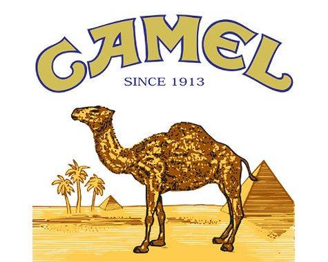 xoffline-Camel Turkish Silver 85 King Box 1 Carton