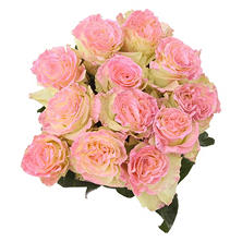 Roses, Fantasy Painted and Glitter Light Pink (50 stems)