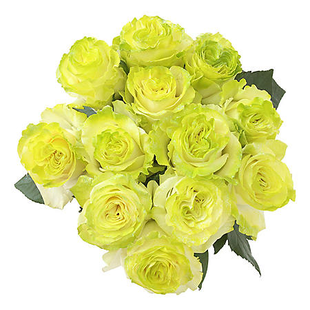 Roses, Fantasy Painted and Glitter Green (50 stems)