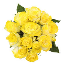 Roses, Fantasy Painted and Glitter Yellow (50 stems)