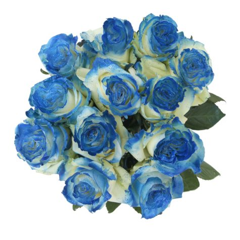 Roses, Fantasy Painted and Glitter Dark Blue  (50 stems)