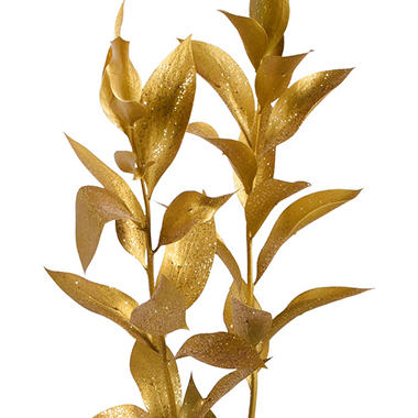 Painted Ruscus, Metallic Gold with Glitter (Choose 60 or 120 stems)