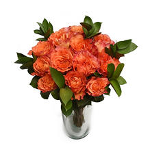 Free Spirit Rose Bouquet (12 stems)