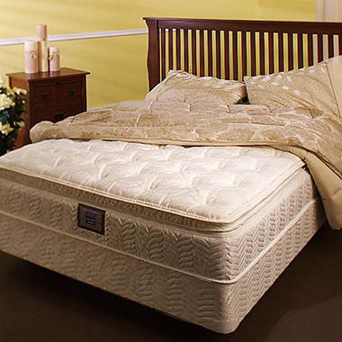 Softside Waterbed Mattress Top and Base - Queen