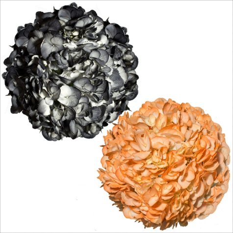 Hydrangeas, Painted Halloween Colors (26 Stems)