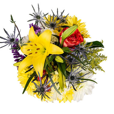 Mixed Farm Bunch, Sunny Daze (10 bunches)