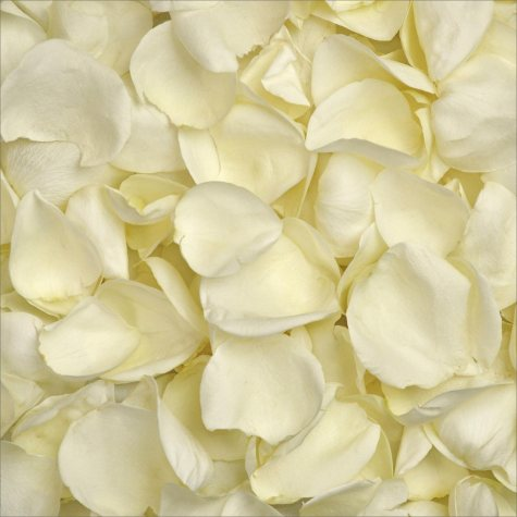 Rose Petals (choose color and quantity)