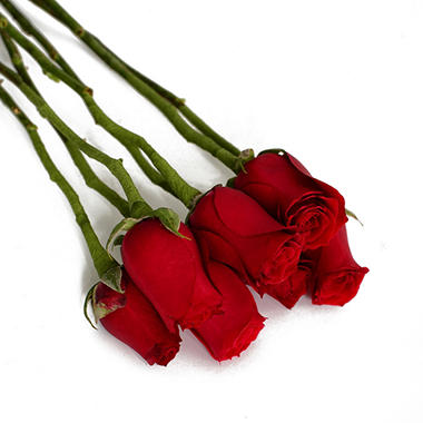 Do-It-Yourself Wired Roses, Red (100 stems)