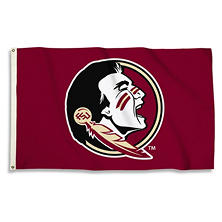 NCAA Florida State Seminoles 3' x 5' Flag with Pole Mount Kit