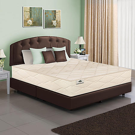 American Sleep Organic Elements Collection 801 Latex Coil Full/Double Mattress