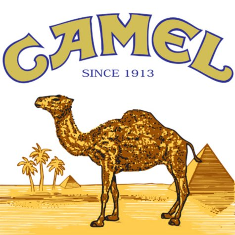Camel Crush King Box (20 ct., 10 pk.)