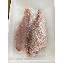 Fresh Red Snapper Fillets (5 lb. box)