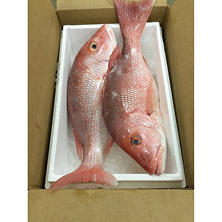 Fresh Whole Red Snapper (5 lb. box)