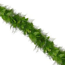 Garland, Plumosus with Salal (25 ft)