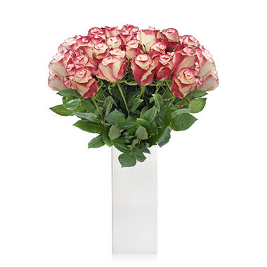 Premium Select Rose Bouquet, 36 Stems (choose color)
