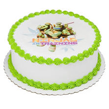 "Member's Mark 10"" Teenage Mutant Ninja Turtles Round Cake"
