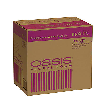 Oasis Instant Floral Foam (36 ct.)