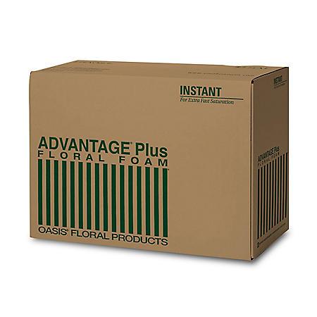 Oasis Advantage Plus Floral Foam Blocks (48 ct.)