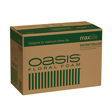 Oasis Instant Deluxe Floral Foam (48 ct.)